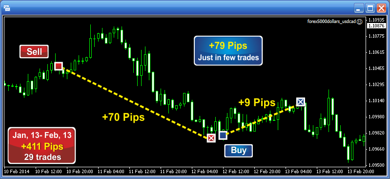 Binary trading helper